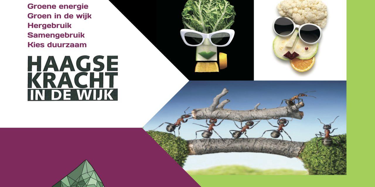 Duurzaamheidsfestival Mariahoeve 2018